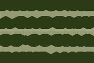 National Academy of Social Insurance Logo